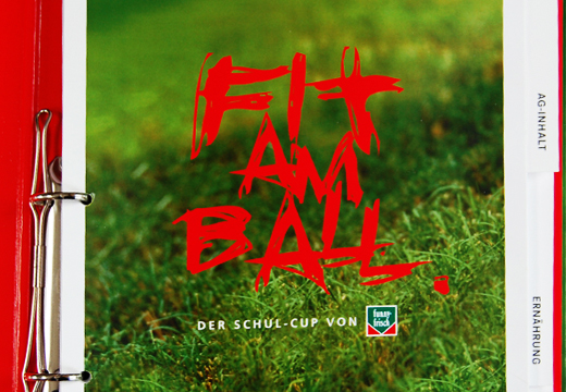02~Fit am Ball_CI~520